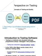 Ch1_A Perspective on Testing