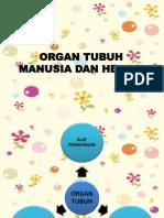 Presentasi IPA Kelas v (Organ Pernapasan Pada Manusia)