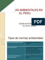 Norm as Ambient Ale Senel Peru