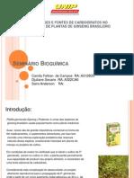 Seminário_Carb_Bioquímica.