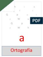 Libro Electronico (Ortografia)