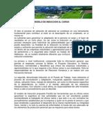 Modelo de Induccion Al Cargo