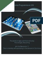 iPhone Mentorship Programme