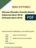 Fot or Receptor Es Bve 27012 Dimas