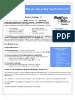 Workplace Big Five ProFile-Introduction