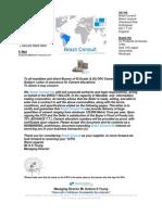 Brazil Consult -Cement Prices+Procedures Rhino Agents