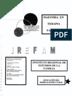9. Aplicacion Del Modelo Estructural,En Familias Diversas