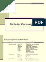 Bacteria 3