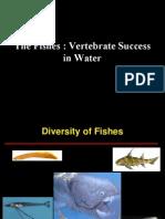 Fish Diversity 1
