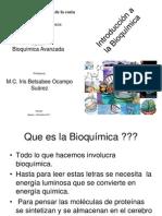 P1 Introduccion a La Bioquimica