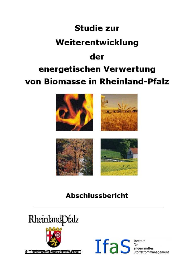 Studie Zur Weiterentwicklung Der Energetischen Verwertung Von ...