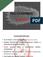 FILO CILIÓFOROS expo