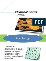 Clostridium Botulinum