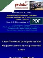 Ecografia Reproductiva en Bovinos La Sota