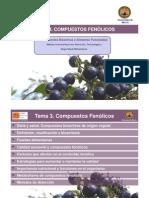 T.3. Compuestos fenólicos