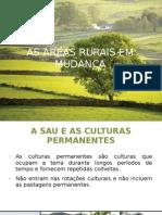 As áreas rurais em mudança