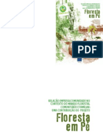 Floresta+Em+Pe