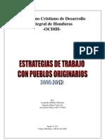 2008 - Estrategia de Trabajo Con Pueblos Originarios