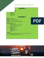 Programacion Festival Llanero 2012