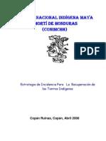 2008 - Estrategia de Incdencia para la Recuperacion de las Tierras Indigenas