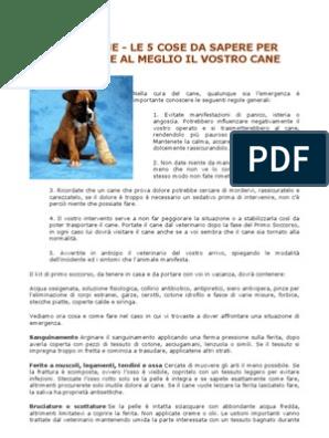 quale percentuale di cani riceve filariosi