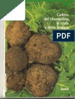 (Libro)  López Contini, Erik - Cultivo del champiñon, la trufa y otros hongos