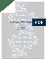 Process Description DNA Revised