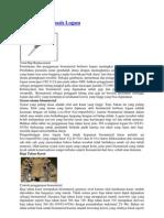 Biomaterial Berbasis Logam