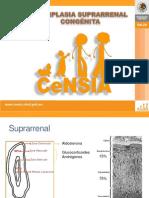 Hiperplasia Suprarenal Congenita Dra. Carolina