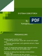 SYSTEMA DIGESTORIA'O5