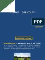 Costos Agricolas 2012-2