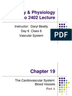 6 AP 2 Lecture 6 Ch 19 Vascular System