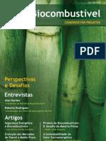 Cadernos FGV Projetos nº 7 - Biocombustíveis