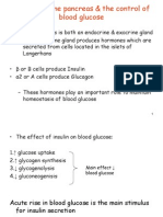 The Endocrine Pancreas & the Control of Blood