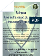 Flyer Spinoza 2