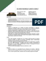 Curriculum Vitae Álvaro Rodrigo