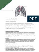 Anatomia Respiratória