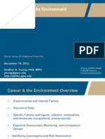 Environmental Causes of Cancer