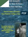 WaterQuality-keepingyourfishalive