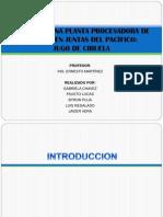 DISEÑO DE UNA PLANTA PROCESADORA DE CIRUELA