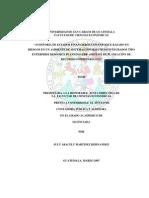 03 2955 Auditoria Pepa