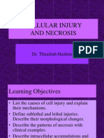 2. Cellular Injury and Necrosis