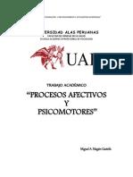 PROCESOS AFECTIVOS -   MAGÁN