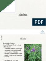 Anexo Hierbas (Sistema Digestivo)
