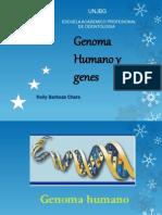 Genes y Genoma Humano