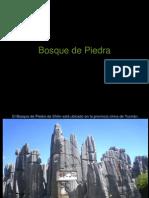 Bosque de Piedra 1