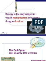 Lecture on Mitosis