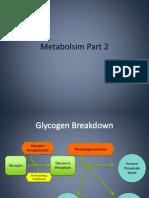 Metabolsim 2