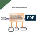 Patofisiologi Sistem Muskuloskeletal.revisi