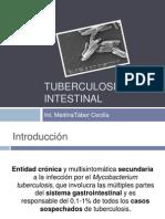 tuberculosisintestinal-110326163209-phpapp02